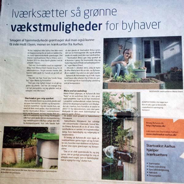 Artikel i Jyllandsposten 2015