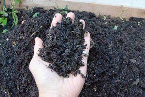 kompost-14