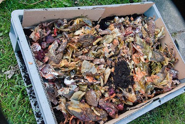 Højbed af plastikkasser med bokashi jord