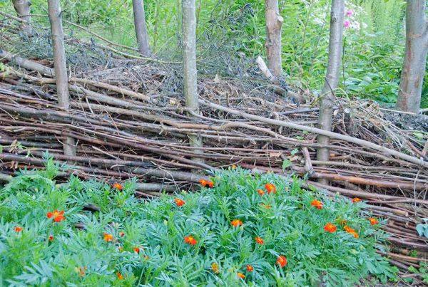 kvashegnet - kompostering af grene