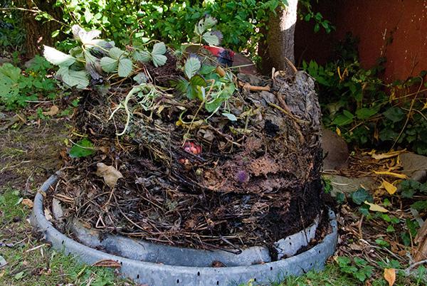 kompostering med effektive mikroorganismer