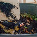 biokul tilsættes Bykompostspanden
