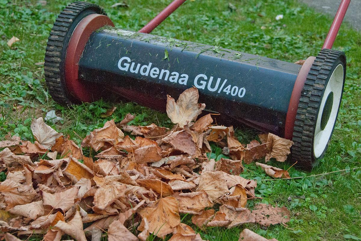 Findeling af blade til græsplænen. Foto byhaver.dk