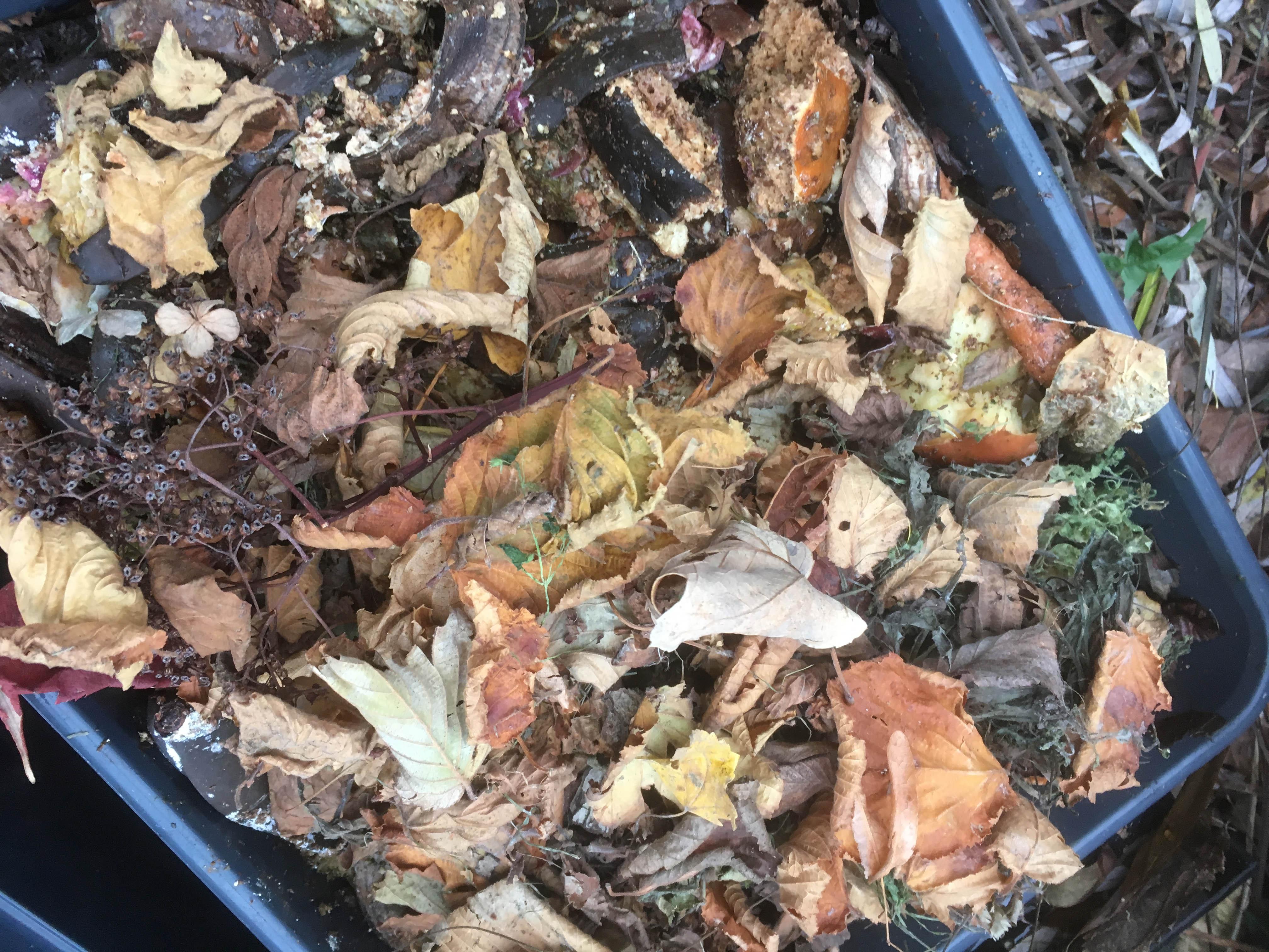 Blade i jordfabrikken