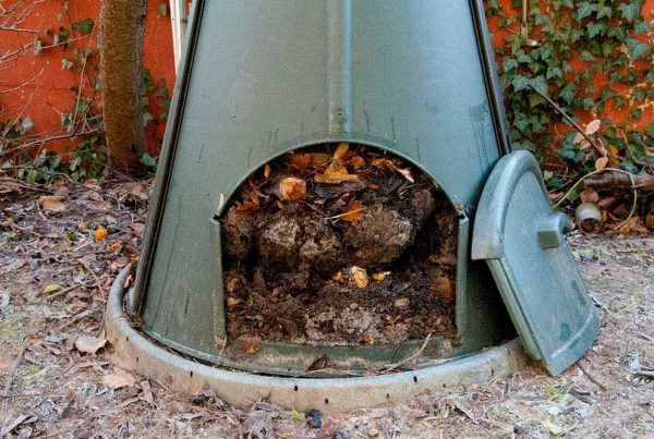 Vinter kompost