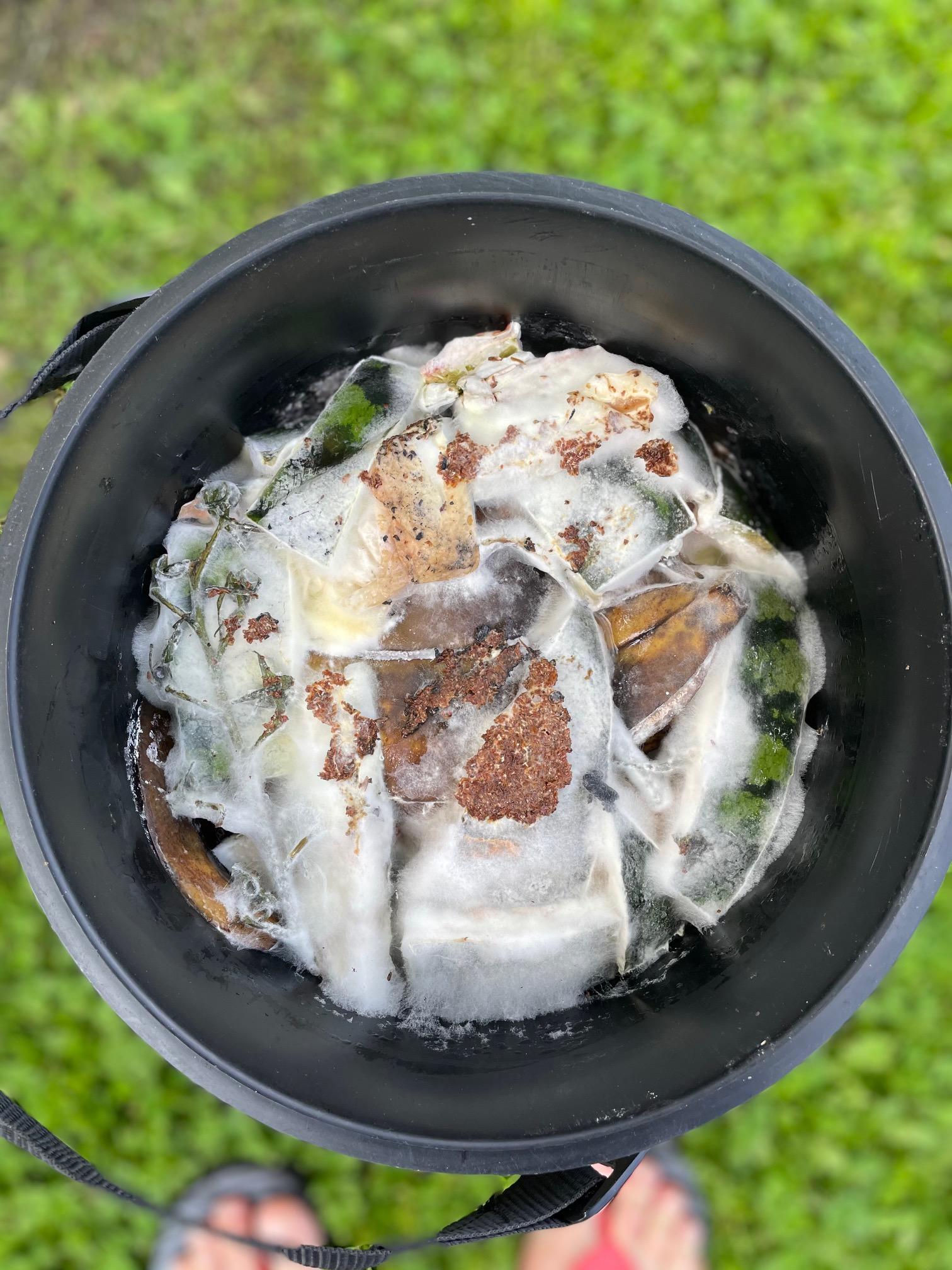 Bokashi og hvid mug